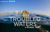 Troubled Waters: A Turtle's Tale